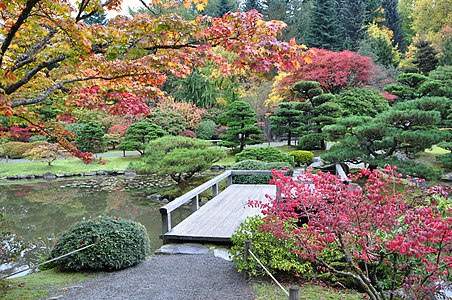 Charmant Seattle Japanese Garden 2011 07