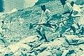 Second Italo-Ethiopian War bombing with mustard gas 2.jpg