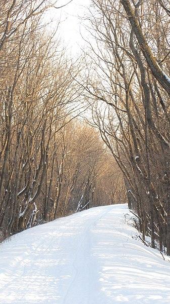 File:Selkirk Park, Manitoba - panoramio (13).jpg
