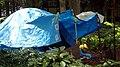 Semacode tent, Homeless camp, Shinjuku Park, Shinjuku, Tokyo, Japan.jpg