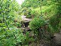 Sentier (31).jpg