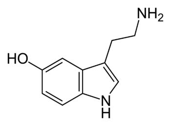 Skeletal formula of serotonin, C 10 H 12 N 2 O...