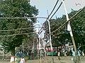 Shah Ali Mazar Mirpur 005.jpg