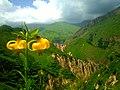 Shahdag National Park 81.jpg