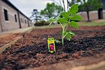 Shaw squadron grows garden for Earth Day 120420-F-OW876-336.jpg