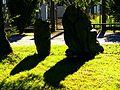 She Loves Shadows - panoramio.jpg