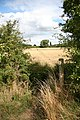 Shire Dyke - geograph.org.uk - 1005240.jpg