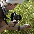 Shooting the Robberfly - Flickr - treegrow.jpg