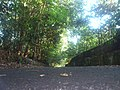 Singkawang, Singkawang City, West Kalimantan, Indonesia - panoramio (14).jpg