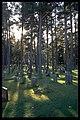 Skogskyrkogården - KMB - 16000300018376.jpg