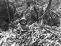 Skull and danger sign on Peleliu.jpg