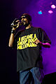Snoop Dogg @ Døgnvill 2009 05.jpg
