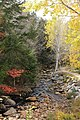 Snows Brook, Nr Village Rd, Waterville Valley - panoramio.jpg