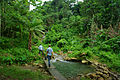 Solomon Water Volunteer Louis Downing crosses the Kongulai river with his counterpart Josh Torenn on his way to conduct tests at the Kongulai water source. The Kongulai provides Honiara with approx. 60% of their water. (10721672114).jpg