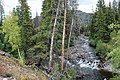 South Fork Elk River.JPG