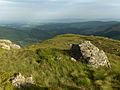 South ridge of Ardnandave Hill - geograph.org.uk - 203998.jpg