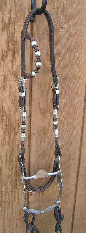 Western pleasure - A western show bridle with silver ornamentation on headstall and bit.