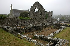 St Dogmaels Abbey - geograph.org.uk - 428651.jpg