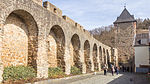 Stadtmauer Bad Münstereifel, nördliche Seite-5730.jpg