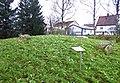 Stensättning i Kv Trym (Raä-nr Falköping 21-1) 5118.jpg