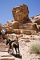 Steps to Petra Monastary.jpg