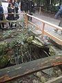 Stone bridge on Magatamaike Pond in Toyouke Grand Shrine 20140203.jpg