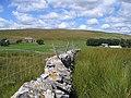 Stone wall towards Thorn Gill - geograph.org.uk - 707241.jpg