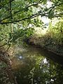 Stream at Horbury Bridge - geograph.org.uk - 976010.jpg