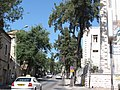 Street of Prophets - western view.jpg