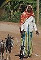 Streets of Harar, Ethiopia.jpg