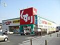 Sugi Pharmacy Ayukawa.JPG