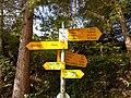 Swiss Hiking Network - Guidepost - Liechtena.jpg