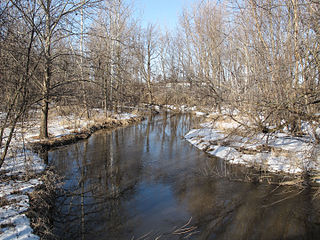 Sycamore Creek (Michigan) tributary of the Red Cedar River in Michigan