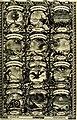 Symbolographia, sive De arte symbolica sermones septem (1702) (14744567541).jpg