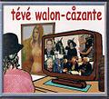 Tévé walon-cåzante 2008 plake emissions.jpg