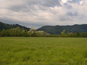 Tallassee (Cherokee town) - Looking west toward the ancient site of Tallassee (under the lake just beyond the treeline)