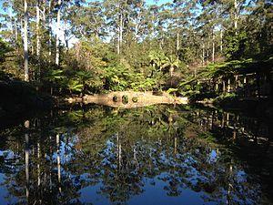 Tamborine National Park - Tamborine Mountain Botanic Gardens