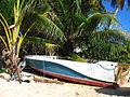 Tc boat.jpg