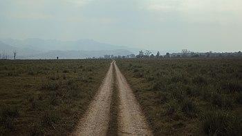 The Endless Road.jpg