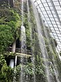 The Fall, Cloud Forest, Gardens by the Bay, Singapore - 20190208.jpg