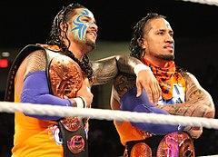 The Usos Tag Champions 2014.jpg