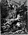 The animals of the world. Brehm's life of animals; (1895) (20585853038).jpg