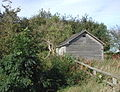 The hundred year old shed - geograph.org.uk - 561258.jpg