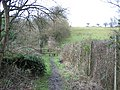 The path to the canal - geograph.org.uk - 62039.jpg