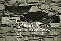 Threave Castle 20080422 - raven.jpg