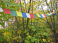 Tibetan prayer flags, samye dzong London.jpg
