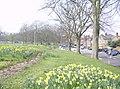Tilehurst Road roundabout - geograph.org.uk - 986160.jpg