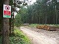 Timber Stacks in Albury Estate - geograph.org.uk - 460737.jpg