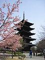 To-ji National Treasure World heritage Kyoto 国宝・世界遺産 東寺 京都231.JPG