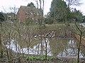 Toker's Green pond - geograph.org.uk - 348216.jpg